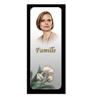 Étiquettes famille (XSFAM)