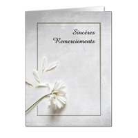 Remerciements (SOF)